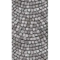 Aqua-mat koupelnová rohož šíře 65 cm - vzor 579-1